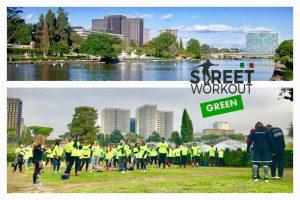 Street Workout Green Eur